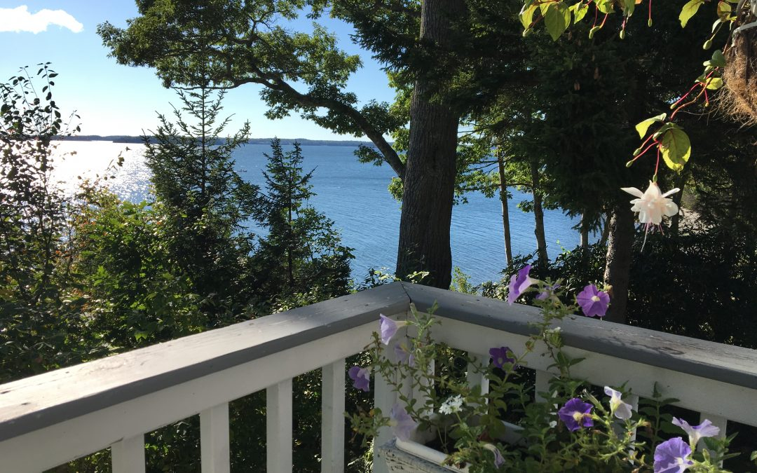 The Cottage | Northport | 3BR 2BA